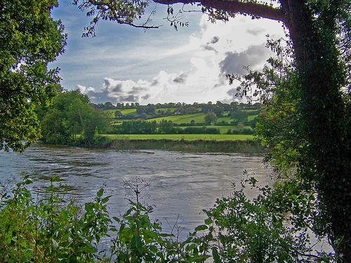 Teifi River valley; courtesy of Autumnsonata on flickr creative commons.